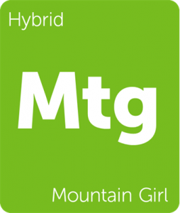Mtg Mountain Girl Leafly cannabis strain tile