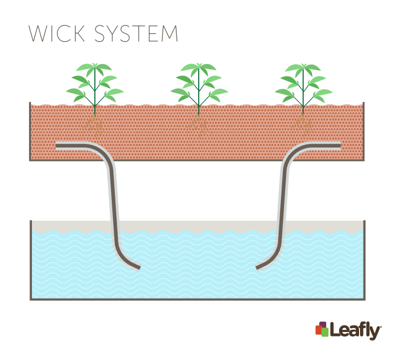 Hydroponic Growing Systems: Wick System