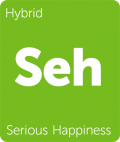 Serious Happiness Leafly Cannabis strain tile