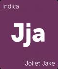 Joliet Jake Leafly cannabis strain tile