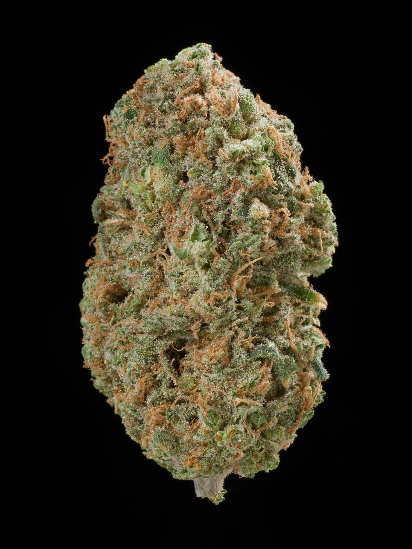 The 100 Marijuana Strains You Must Try Before You Die   Leafly