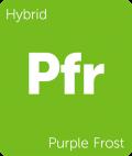 Purple Frost Leafly cannabis strain tile