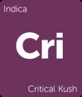 Leafly Critical Kush indica cannabis strain