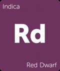 Leafly Red Dwarf indica cannabis strain