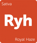 Leafly Royal Haze sativa cannabis strain