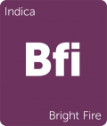 Leafly Bright Fire indica cannabis strain