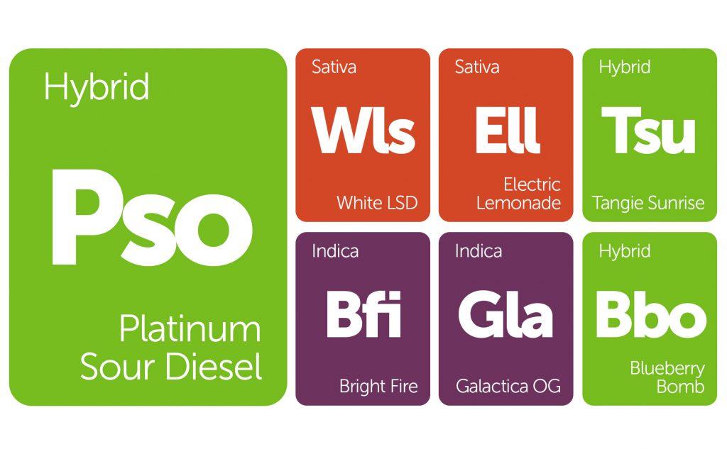 New Strains Alert: Electric Lemonade, Platinum Sour Diesel