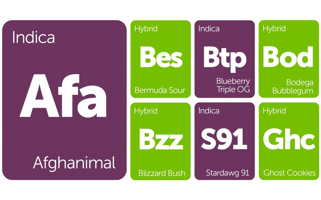 New Strains Alert: Blizzard Bush, Ghost Cookies, Afghanimal, and