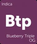 Blueberry Triple OG Leafly cannabis strain tile