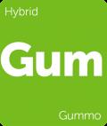 Gummo Leafly cannabis strain tile