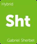 Gabriel Sherbet Leafly cannabis strain tile