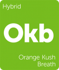 Orange Kush Breath Leafly cannabis strain tile