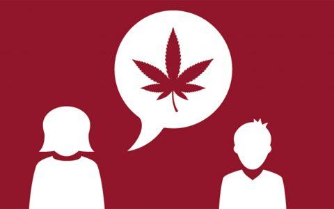 canada-cannabis-education-480x300.jpg