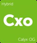 Calyx OG Leafly cannabis strain tile