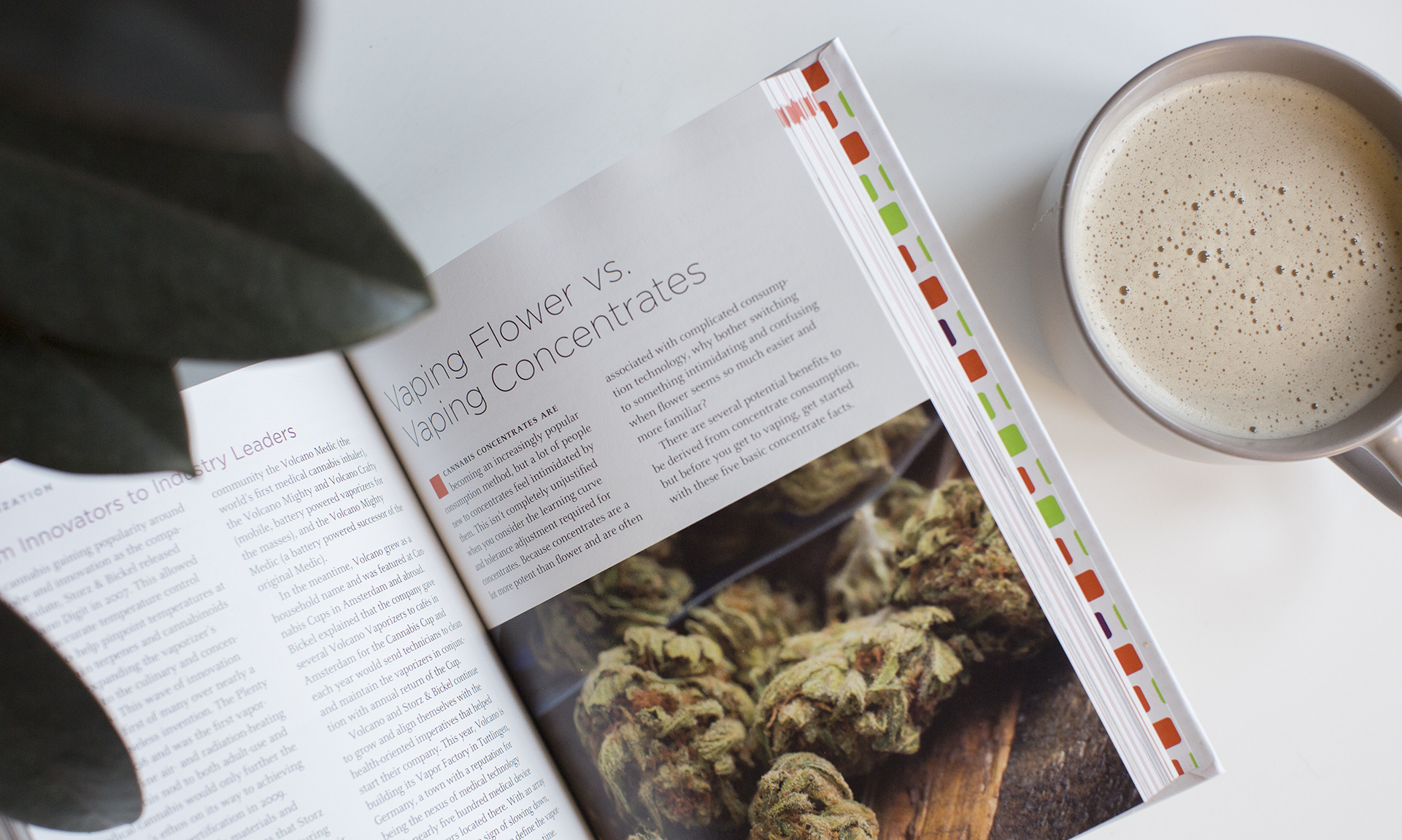 Here's Where to Buy 'The Leafly Guide to Cannabis' Book   Leafly