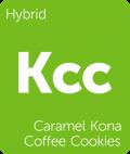 Leafly Caramel Kona Coffee Cookies hybrid cannabis strain
