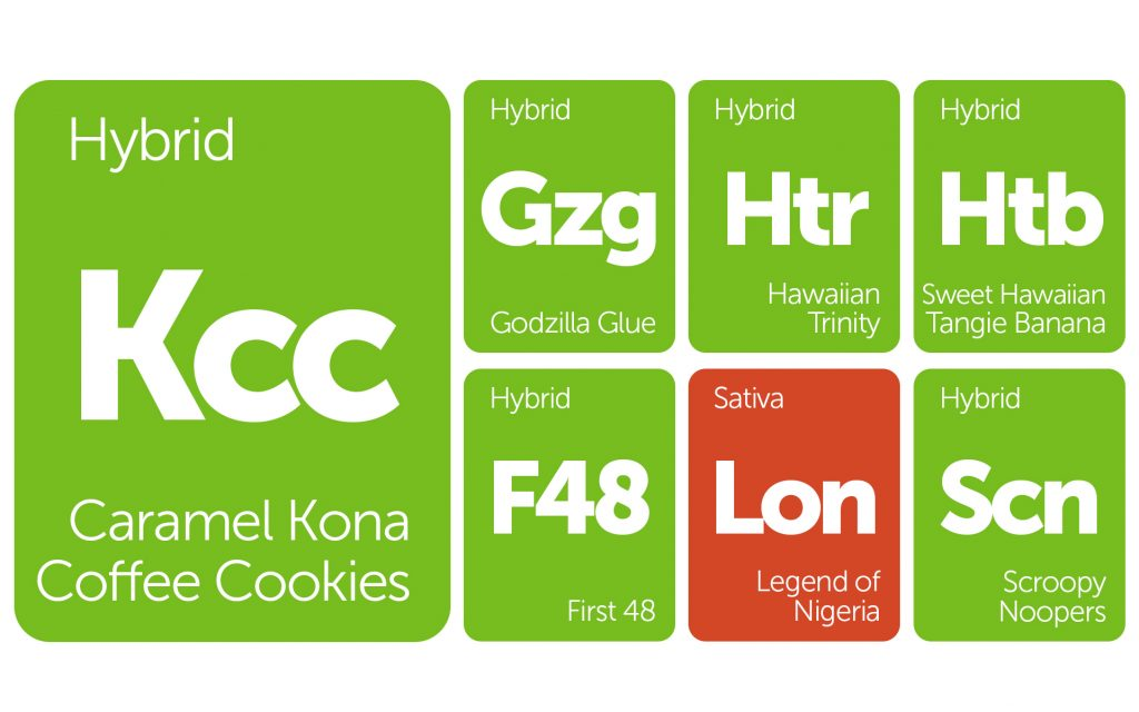 New Strains Alert: Scroopy Noopers, Godzilla Blood, Legend of Nigeria, and More