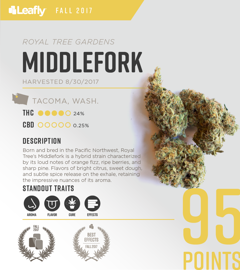 Royal Tree Gardens' Middlefork: the 3rd-best-tasting strain in Washington state for fall 2017