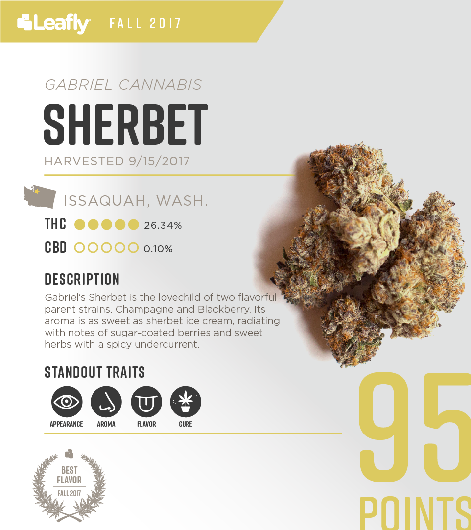 Gabriel Cannabis' Sherbet: the best-tasting strain in Washington state for fall 2017