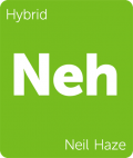 Neil Haze Leafly cannabis strain tile