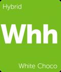 White Choco Leafly cannabis strain tile