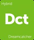 Dreamcatcher Leafly cannabis strain tile