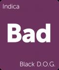 Black D.O.G. Leafly cannabis strain tile