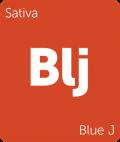 Blue J Leafly cannabis strain tile
