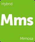 Mimosa Leafly cannabis strain tile