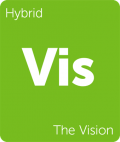 The Vision Leafly cannabis strain tile