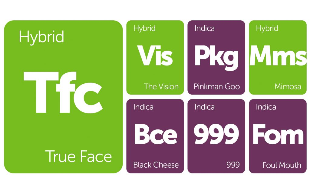 New Strains Alert: Mimosa, True Face, Foul Mouth, and More