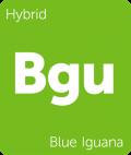 Blue Iguana Leafly cannabis strain tile
