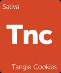 Tangie Cookies weed strain tile