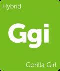 Gorilla Girl weed strain tile
