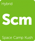 Space Camp Kush marijuana strain tile