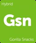 Gorilla Snacks marijuana strain tile