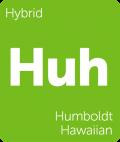 Leafly Humboldt Hawaiian hybrid cannabis strain tile