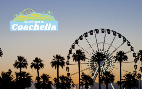 Your Down-Low Guide to Cannabis at Coachella | Leafly