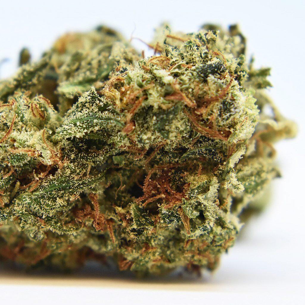 4/20 Weed Deals in Alaska: Bad Gramm3r - Wasilla