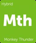 Monkey Thunder weed strain
