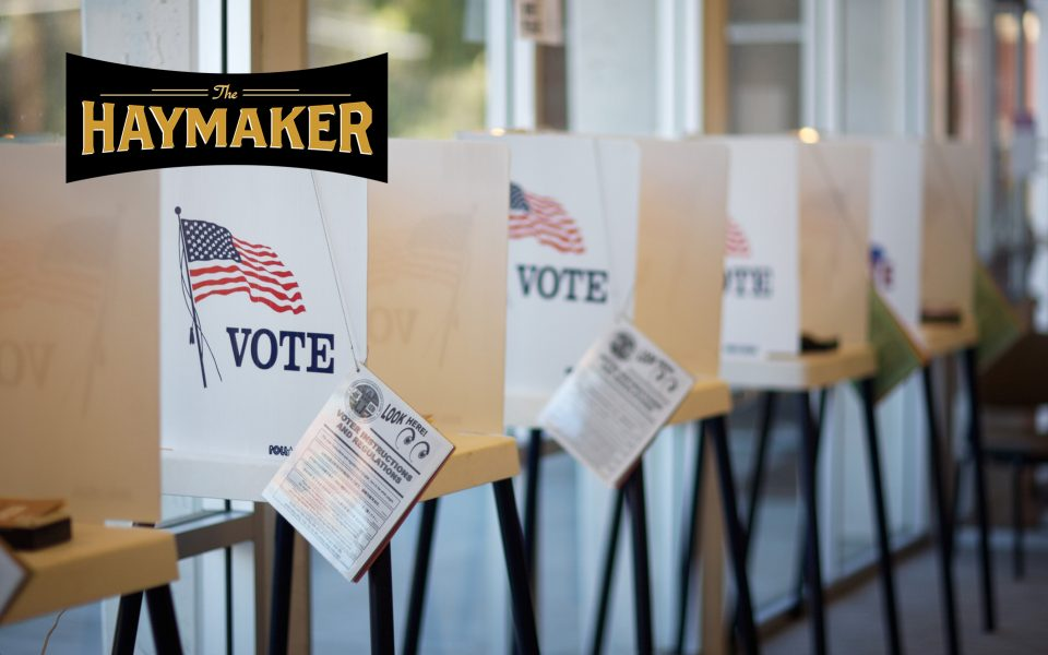 Michigan GOP Considers Legalizing Now to Depress Voter Turnout This Fall