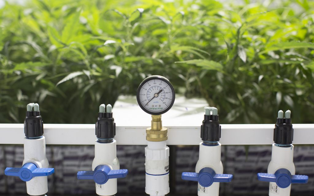 3 Ways to Automate Your Home Cannabis Grow | Leafly