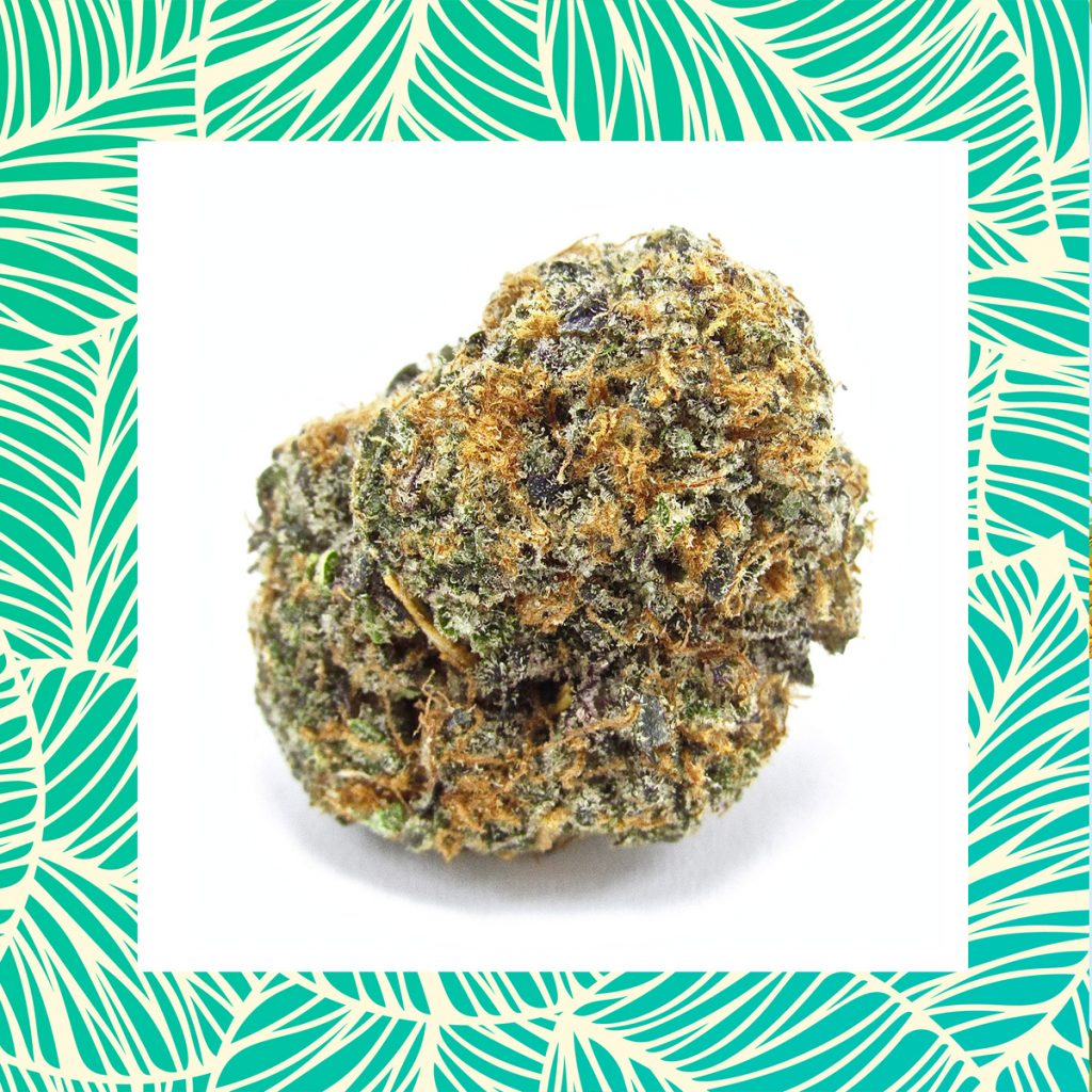 Here's Where to Buy California's Cannabis Cup Winners of