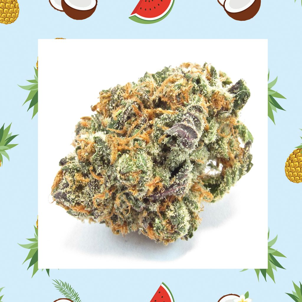 Best cannabis flower in Southern California: Mimosa by The Village