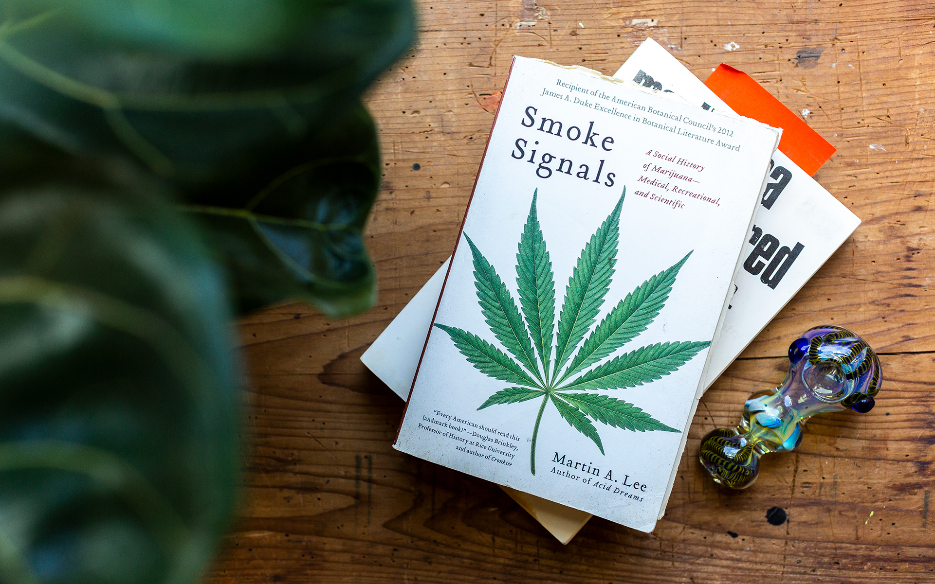 ba141b5b17 12 Cannabis Books That Changed the Game
