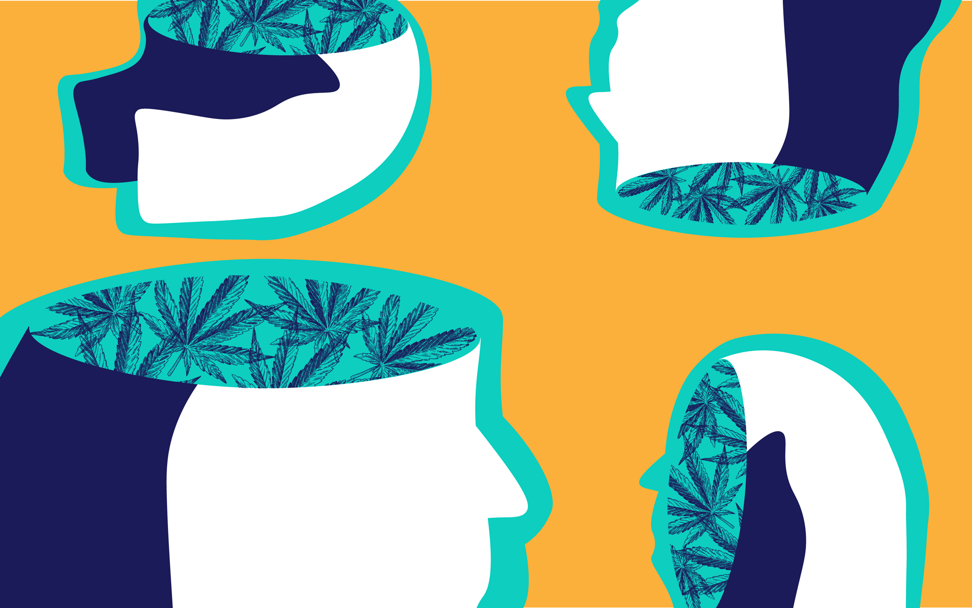 CBD vs  THC: What's the Difference? | Leafly