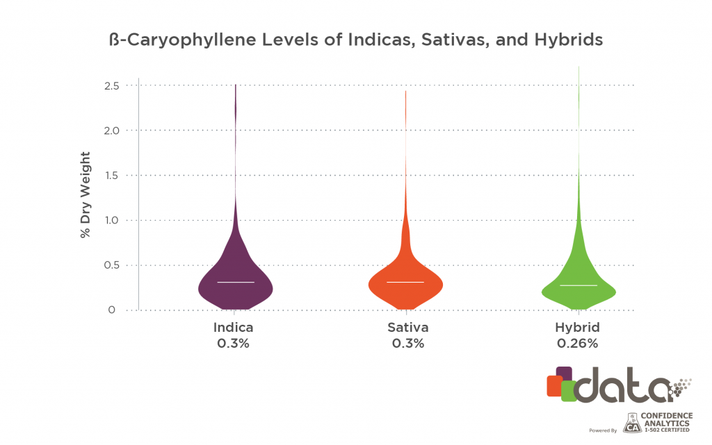 beta-caryophyllene marijuana strains for pain: levels in indicas, sativas, & hybrids
