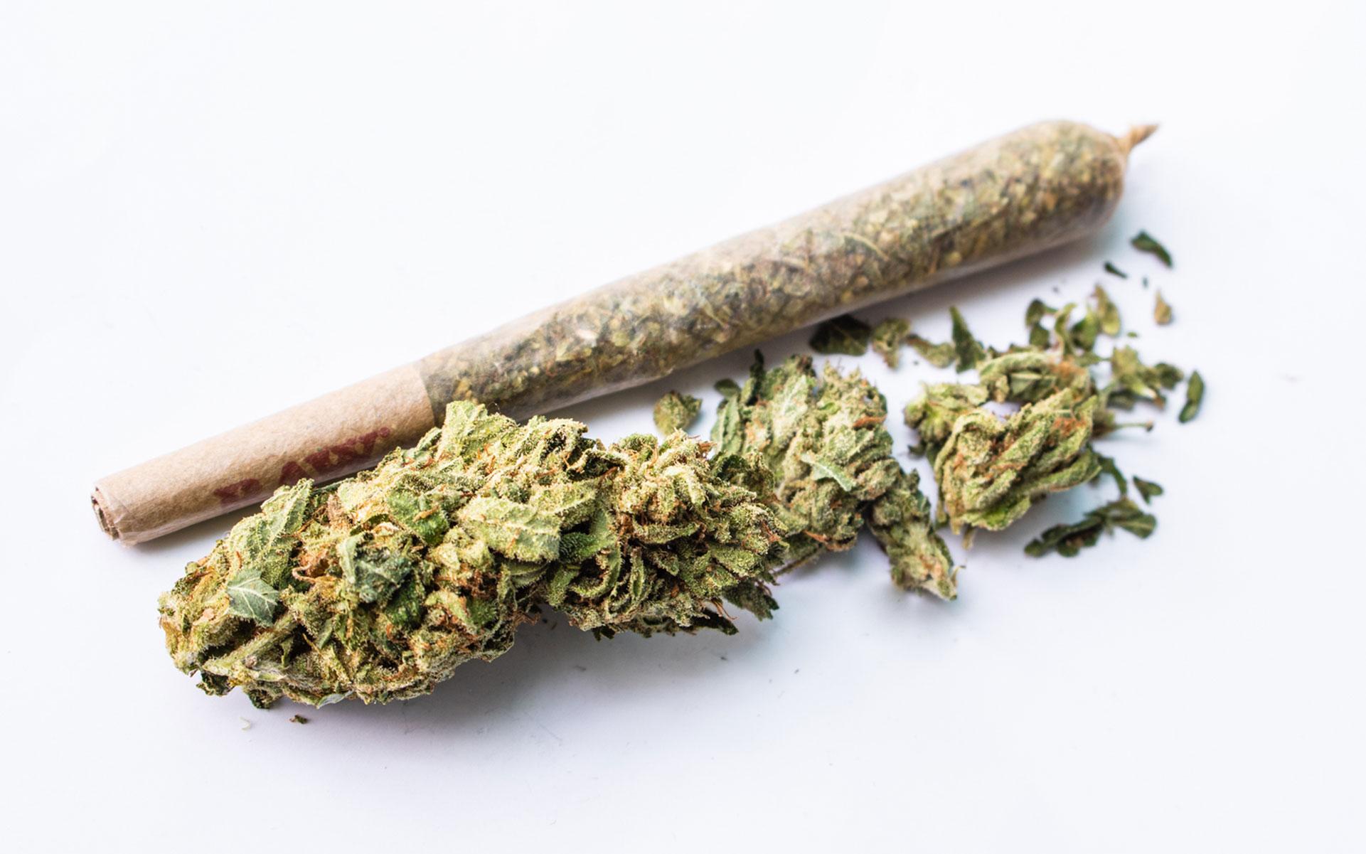 cbd, thc, cbd vs thc, cannabis, marijuana