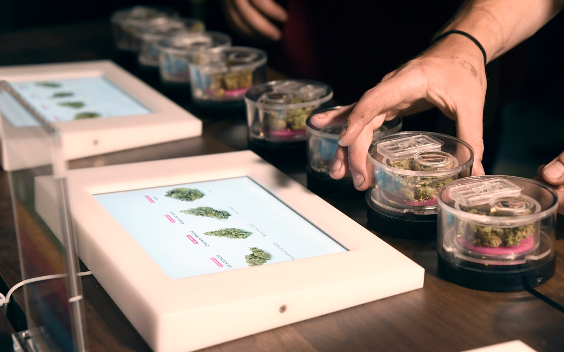 Touch-screen tablets and THC test scores greet L.A. pot shoppers. (Courtesy of Medmen)