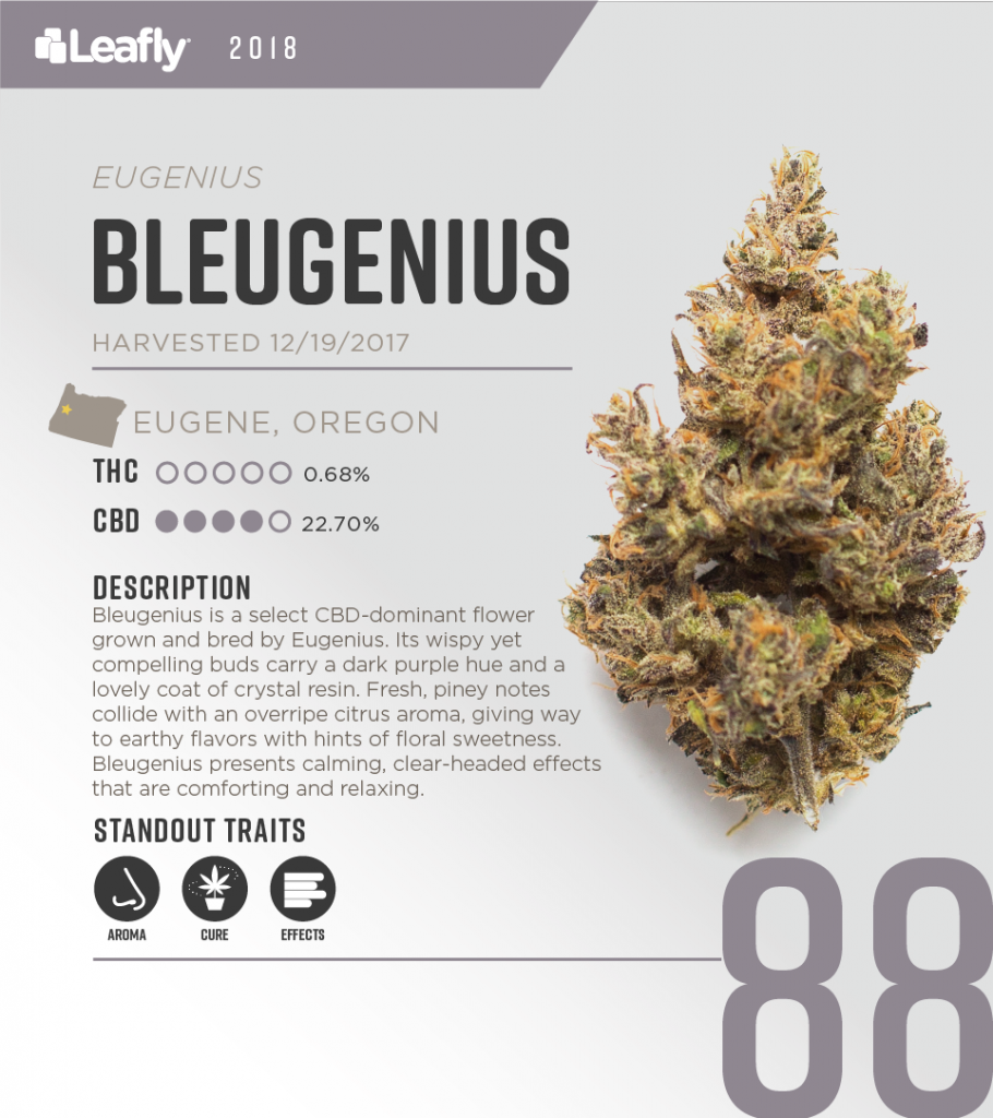 Try These Fantastic CBD Strains Grown in Oregon | Leafly